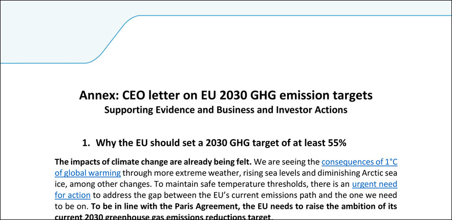 Annex CEO letter on EU 2030