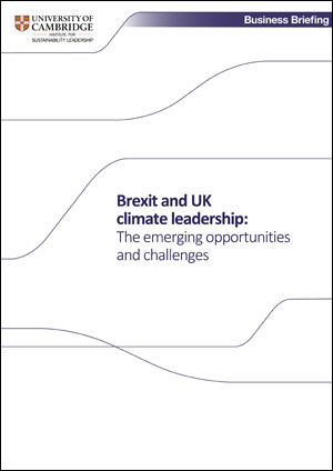 Brexit UK report cover