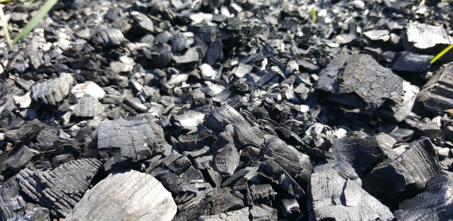 Coal regions