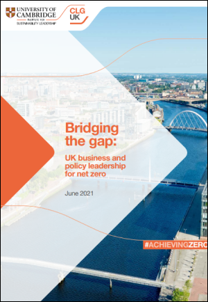 Bridging the gap report cover