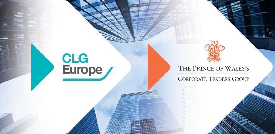 CLG Main image EU and UK logos