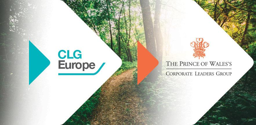 How policymakers and business leaders can back a green economic recovery that puts Europe and the UK on the path towards economic renewal and climate neutrality.